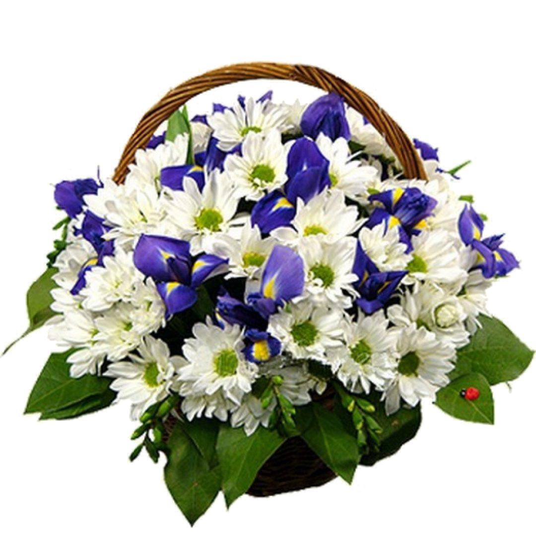 Цветов, букет из хризантем в корзине